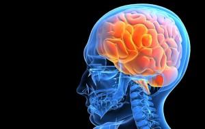 РЭГ сосудов головного мозга - что это за обследование