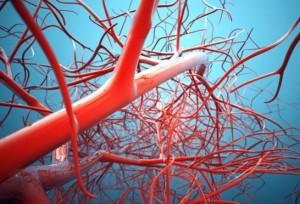 Шейные сосуды - как выявить наличие патологий