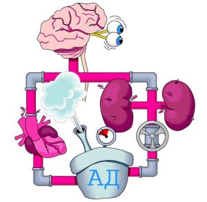 Схема артериального давления