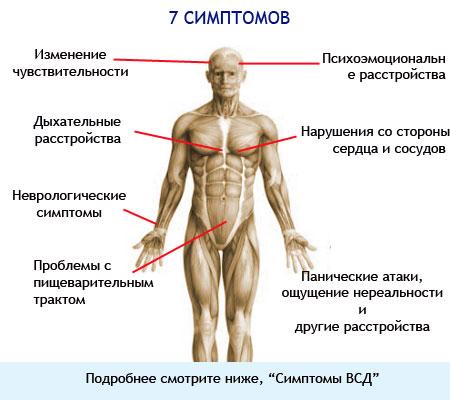 Вегето-сосудистая дистония - основные 7 симптомов